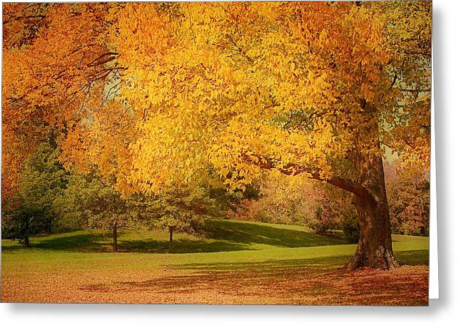 As The Leaves Fall Greeting Card by Kim Hojnacki