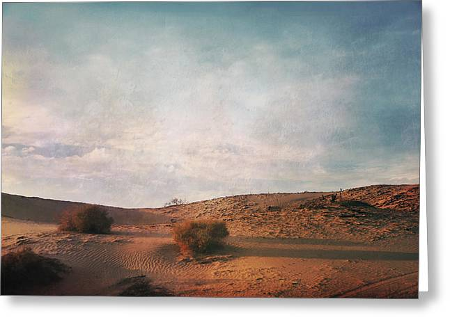 Evening Lights Greeting Cards - As the Sand Shifts So Do I Greeting Card by Laurie Search