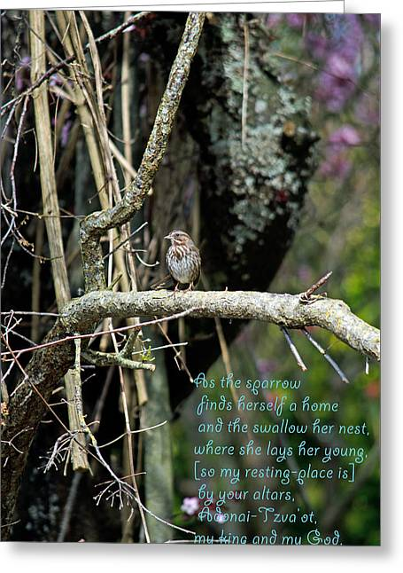 Psalm One Greeting Cards - As the Sparrow  Greeting Card by Roger Reeves  and Terrie Heslop