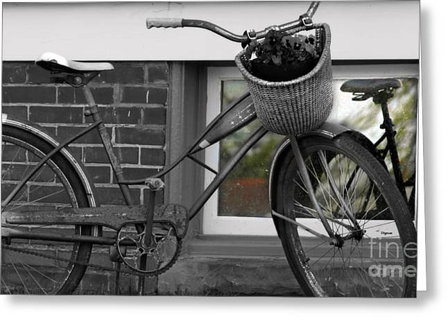 Vintage Bicycle Greeting Cards - As Time Cycles Past Greeting Card by Steven  Digman