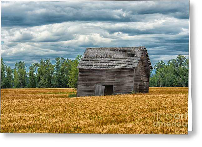 Recently Sold -  - Old Barns Greeting Cards - As Time Goes By Greeting Card by Sandra Bronstein
