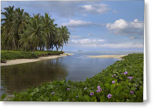 Tim Fitzharris Greeting Cards - Asan Beach in Guam Greeting Card by Tim Fitzharris