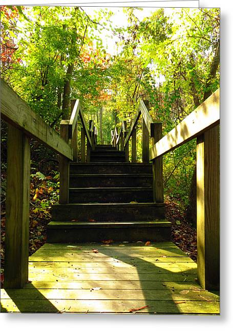 Wooden Stairs Greeting Cards - Ascend  Greeting Card by Shawna  Rowe