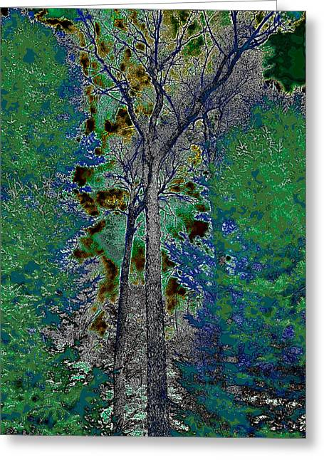 Surreal Landscape Greeting Cards - Ascending Trees Greeting Card by David Patterson