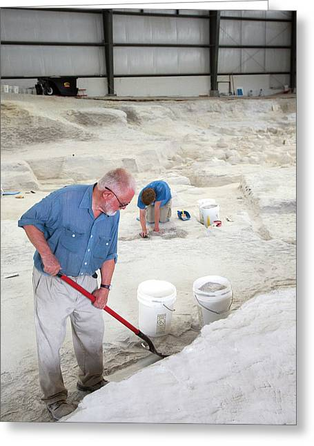 Ashfall Fossil Beds Excavation Greeting Card by Jim West
