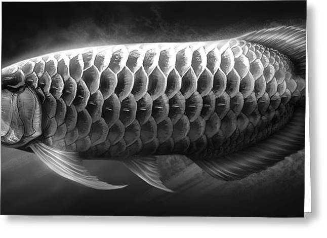 Asian Greeting Cards - Asian Arowana_01 Greeting Card by Javier Lazo