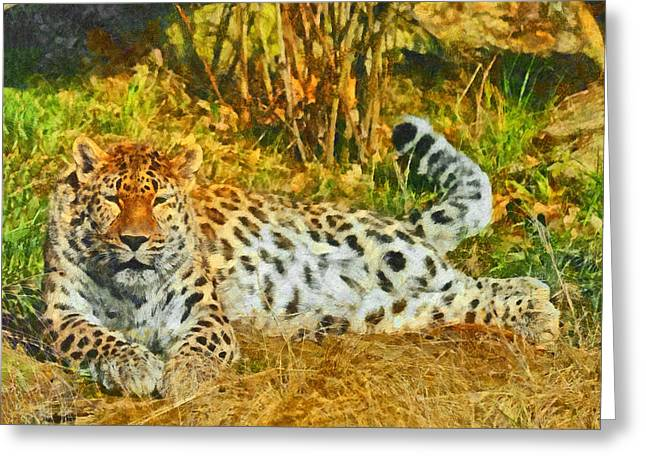 Asian Snow Leopard Greeting Card by Digital Photographic Arts