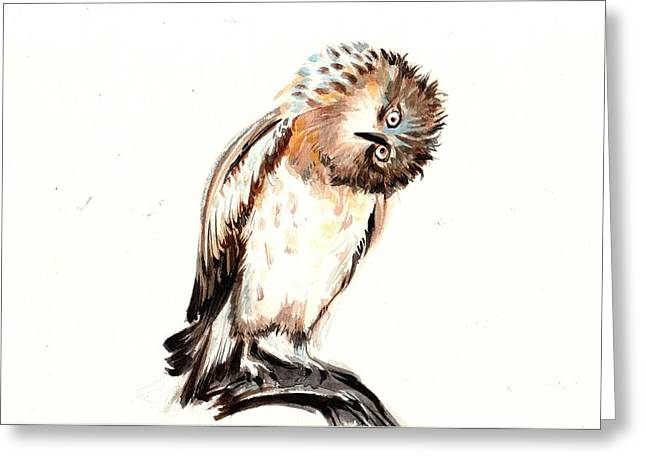 Ho Ho Ho Greeting Cards - Asking Owl Watercolor Greeting Card by Tiberiu Soos