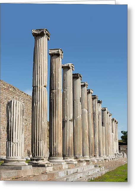 Asklepeion Greeting Card by David Parker