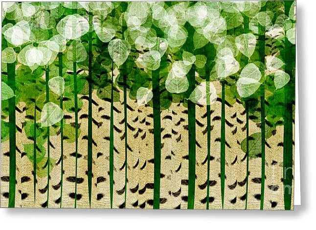 Birch Tree Digital Greeting Cards - Aspen Colorado Abstract Panorama 2 Greeting Card by Andee Design