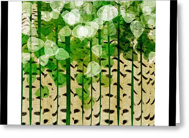 Birch Tree Greeting Cards - Aspen Colorado Abstract Square 2 Greeting Card by Andee Design