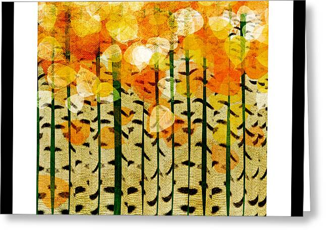 Design And Photography. Greeting Cards - Aspen Colorado Abstract Square 4 Greeting Card by Andee Design