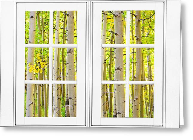 Room With A View Greeting Cards - Aspen Forest White Picture Window Frame View Greeting Card by James BO  Insogna