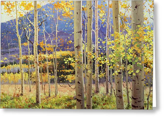 Birch Tree Greeting Cards - Panorama view of Aspen Trees Greeting Card by Gary Kim