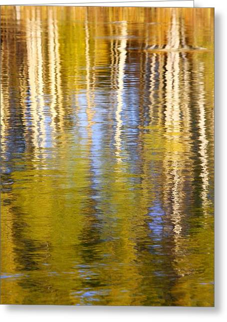 Breezy Greeting Cards - Aspen Reflection Greeting Card by Kevin Desrosiers