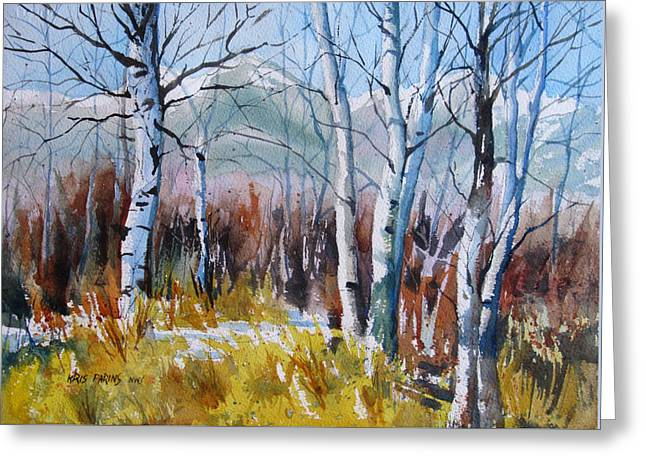 Aspen Thicket Greeting Card by Kris Parins