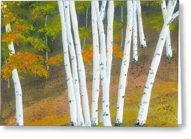 Wheat Field Sunset Print Greeting Cards - Aspen Tree Grove Greeting Card by David Wolfer