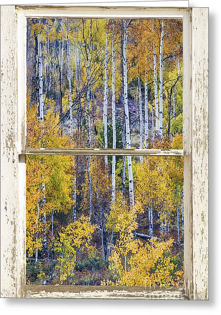 Room With A View Greeting Cards - Aspen Tree Magic Cottonwood Pass White farm House Window Art Greeting Card by James BO  Insogna