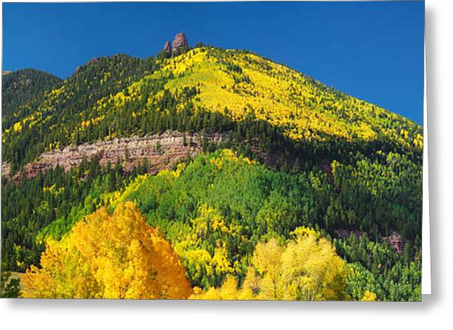 Telluride Greeting Cards - Aspen Trees On Mountain, Needle Rock Greeting Card by Panoramic Images