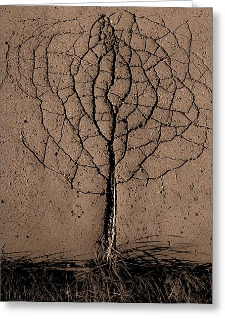 Asphalt Tree Greeting Card by Rasto Gallo