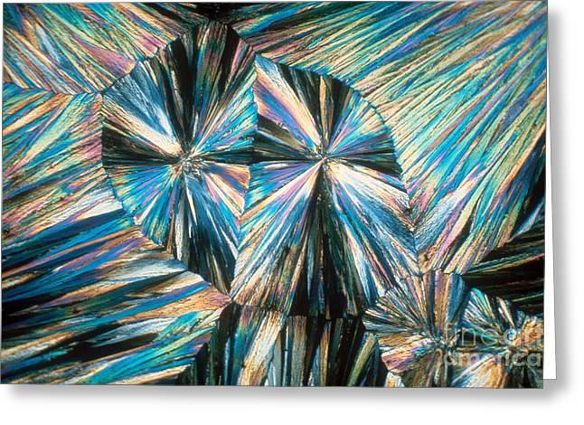Aspirin Greeting Cards - Aspirin Crystals Greeting Card by James M. Bell