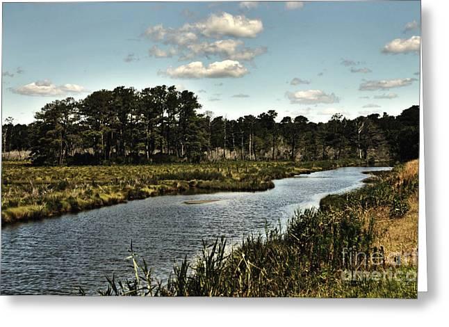 Assateague Island - A Nature Preserve Greeting Card by Gerlinde Keating - Keating Associates Inc