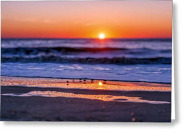 Sunset Scene Greeting Cards - Assateague Sunrise - Ocean - Virginia Greeting Card by Sharon Norman