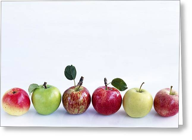 Royal Gala Greeting Cards - Assorted apples Greeting Card by Science Photo Library