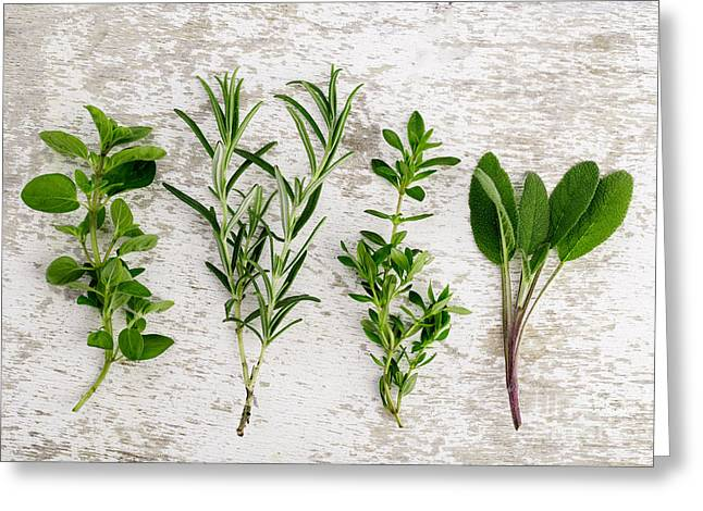 Prepared Greeting Cards - Assorted fresh Herbs Greeting Card by Nailia Schwarz