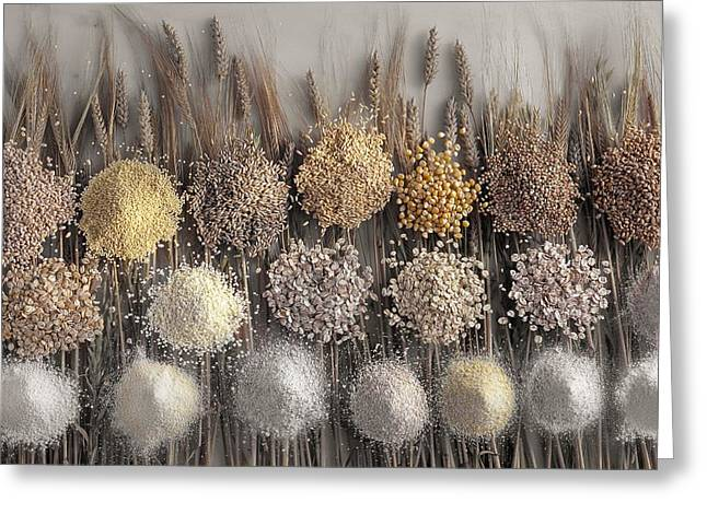 Flour Greeting Cards - Assorted grains and flour Greeting Card by Science Photo Library