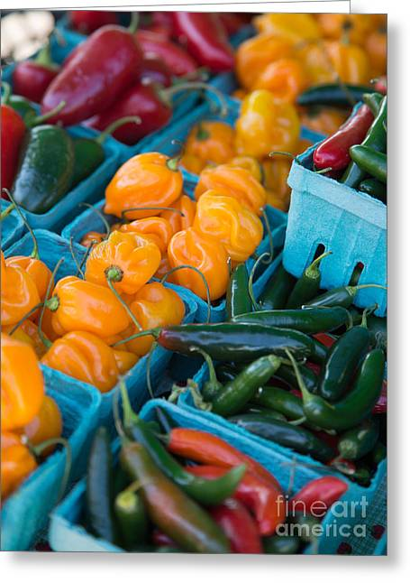 Yellow Pepper Greeting Cards - Assorted Peppers Greeting Card by Rebecca Cozart