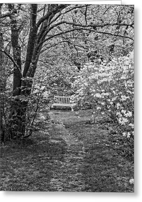 Spring In Maine Greeting Cards - Asticou Azelea Garden on Mount Desert Island Maine Greeting Card by Keith Webber Jr