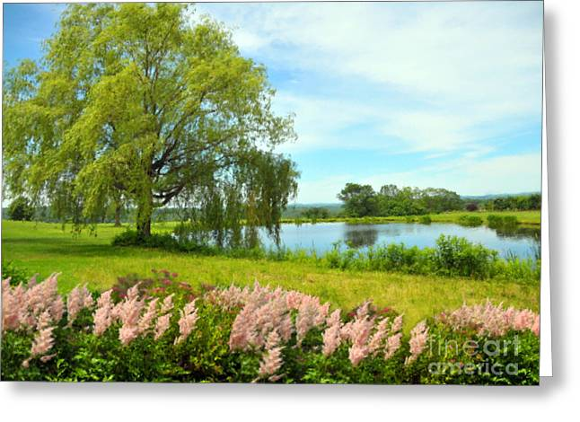 Willow Lake Pastels Greeting Cards - Astilbes By The Pond Greeting Card by Magna Carta
