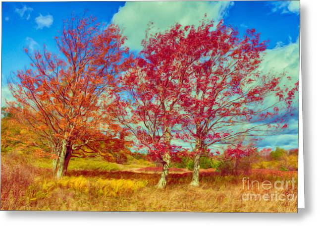 Paint Photograph Greeting Cards - Astonishing Autumn - Fall Colors at Dolly Sods II Greeting Card by Dan Carmichael