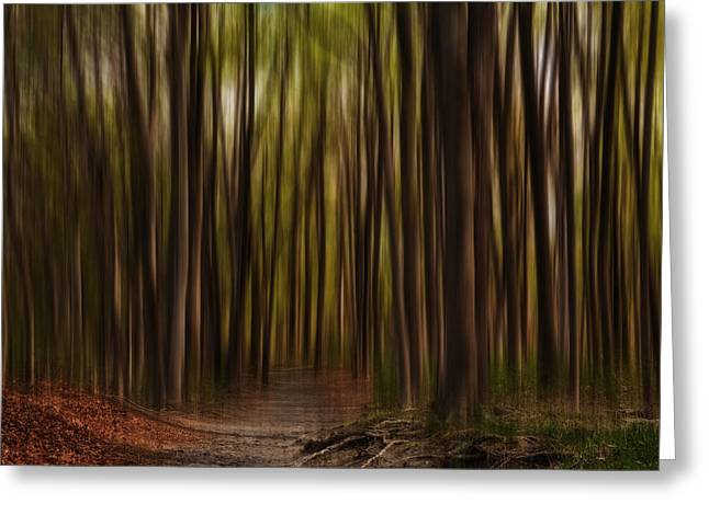 Tall Trees Greeting Cards - Astray- Walking Path Art Greeting Card by Lourry Legarde