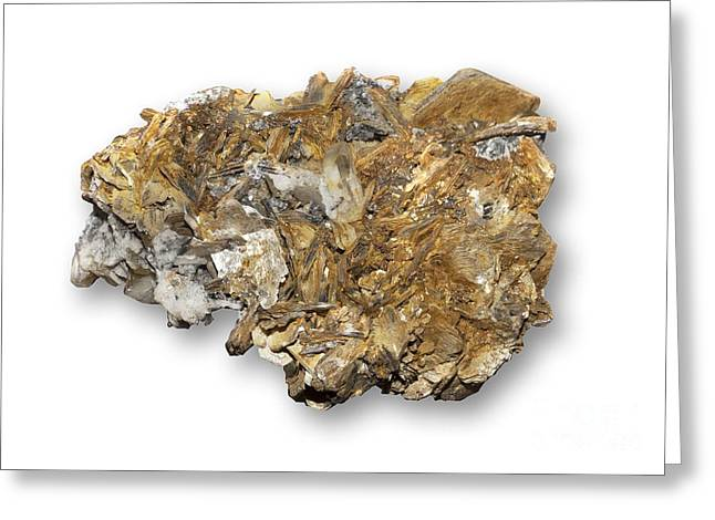 Titanium White Greeting Cards - Astrophyllite Mineral Greeting Card by Dirk Wiersma