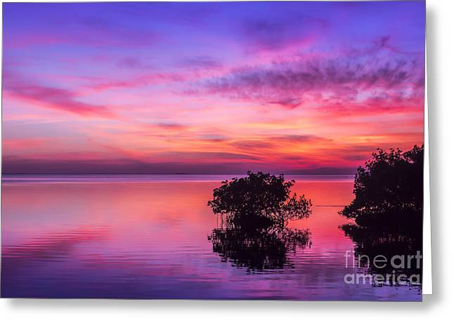 Gulf Of Mexico Scenes Greeting Cards - At days End Greeting Card by Marvin Spates