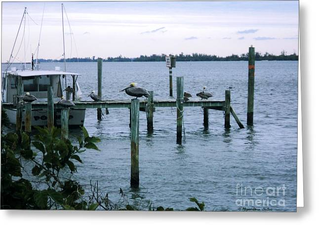 St. Lucie County Greeting Cards - At Days End Greeting Card by Megan Dirsa-DuBois