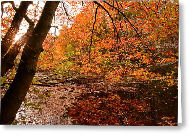 Autumn Art Greeting Cards - At Its Best Greeting Card by Lourry Legarde
