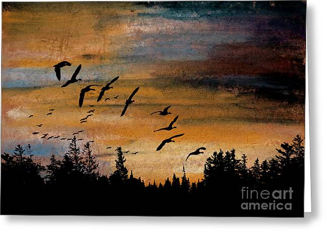 Hunting Bird Pastels Greeting Cards - At Last Light Greeting Card by R Kyllo