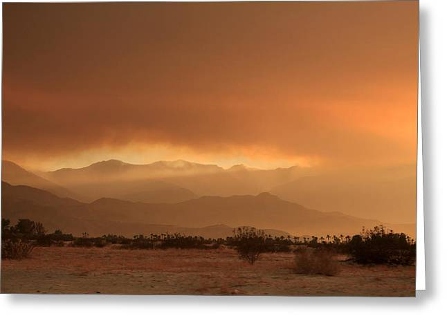 Wildfires Greeting Cards - At Least a Ray of Hope Greeting Card by Laurie Search