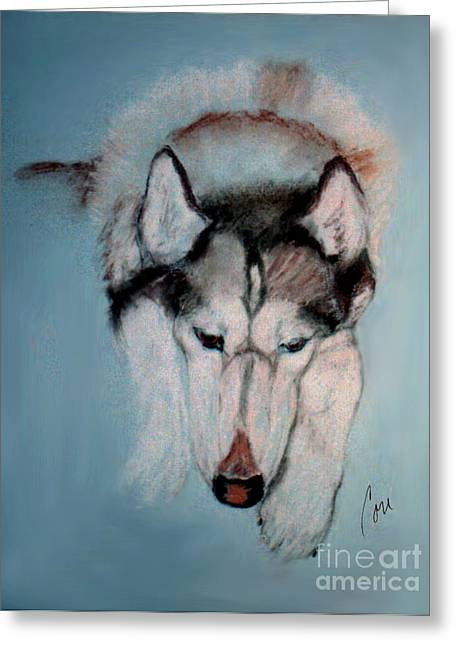 Husky Pastels Greeting Cards - At Rest Greeting Card by Cori Solomon