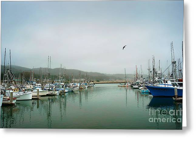 Half Moon Bay Greeting Cards - At Rest Greeting Card by Ellen Cotton