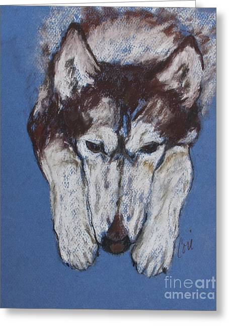 Husky Pastels Greeting Cards - At Rest II Greeting Card by Cori Solomon