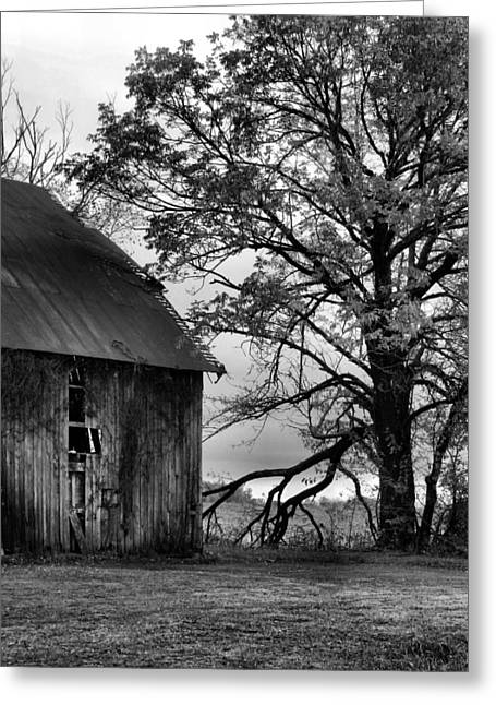 Julie Dant Photographs Greeting Cards - At the Barn in BW Greeting Card by Julie Dant