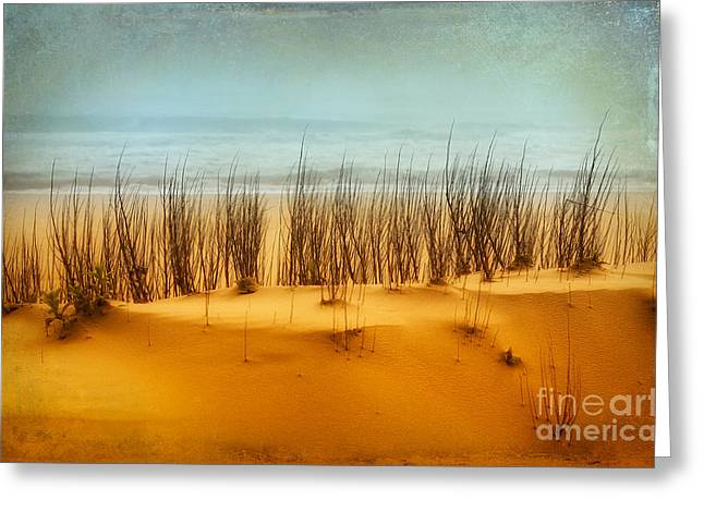 Beach Decor Framed Prints Greeting Cards - At the Beach - Outer Banks II Greeting Card by Dan Carmichael