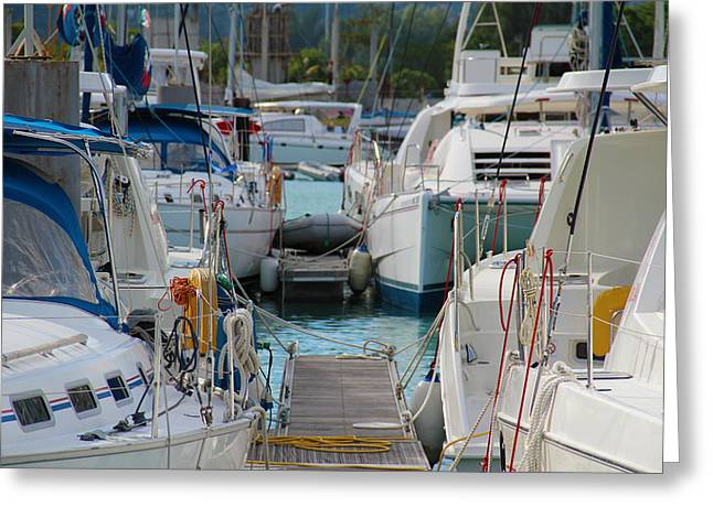 Boats At Dock Greeting Cards - At the Dock Greeting Card by Debbie Cundy