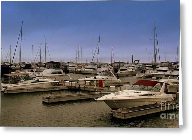 Diane Reed Greeting Cards - At The Docks Greeting Card by Diane Reed
