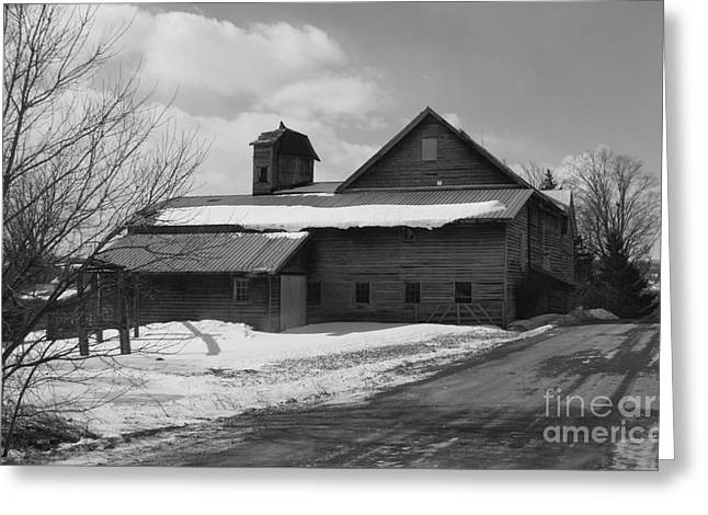 Winter Road Scenes Digital Greeting Cards - At the end of the road. Greeting Card by Theresa Fiacchi