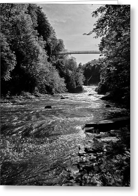 Recently Sold -  - Ithaca Greeting Cards - At the Gorge Floor Greeting Card by Monroe Payne
